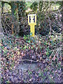 TM3169 : Fire Hydrant on Mill Road by Adrian Cable