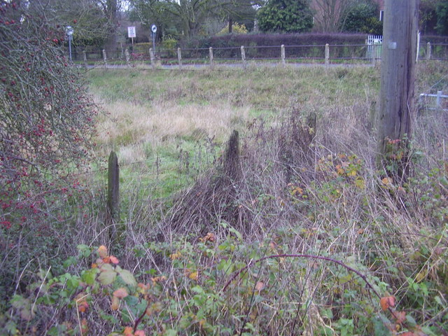 The old line fencing