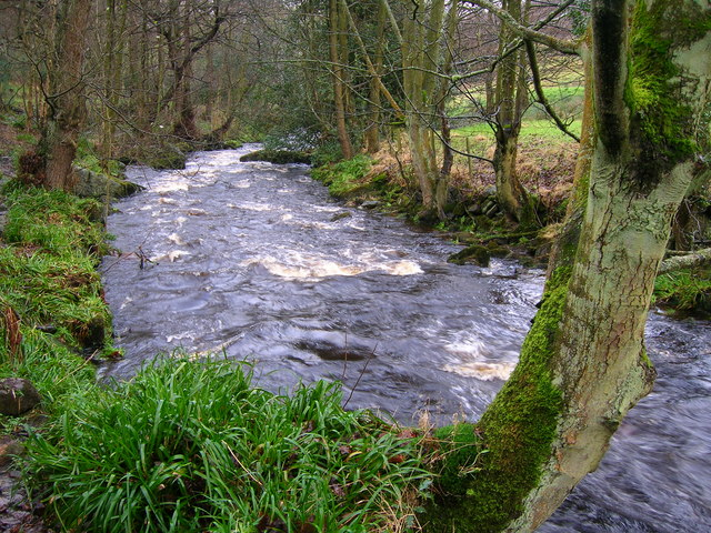 Cragg Brook below Spa Bridge