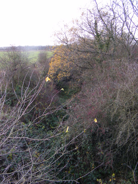 Dismantled Railway, off Reepham Road,Themelthorpe