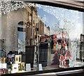 SX9163 : Hoopers' window, Torquay : Week 48