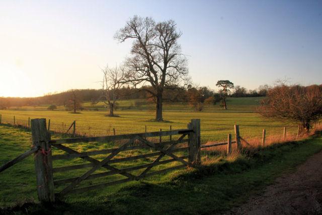 Gateway in Ickworth Park