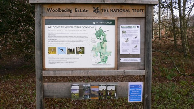 National Trust Information Board on Woolbeding Common