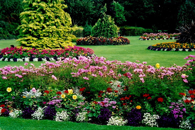 Do it yourself landscaping guide for Garden scaping