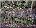 NS5751 : The Orry Mill - mill wheel pit by Kenneth Mallard