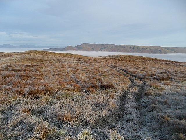 Rough moorland