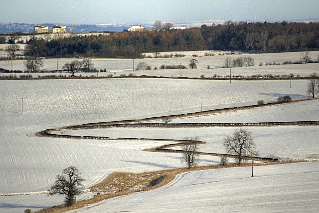 Fields Near Pond Dale