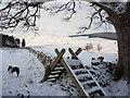 NT4835 : Stile onto Mossilee Farm : Week 52