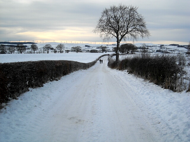 Jackton Road Under Snow