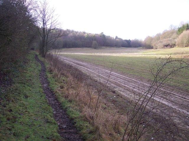 Bridleway to Badlesmere Park Wood