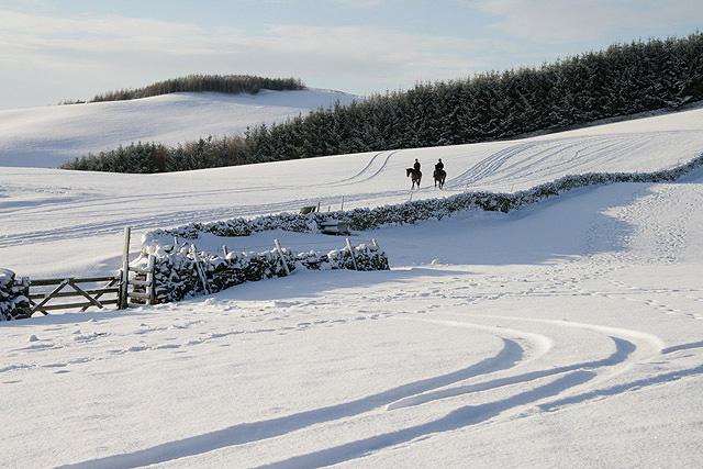 Winter on Gala Hill