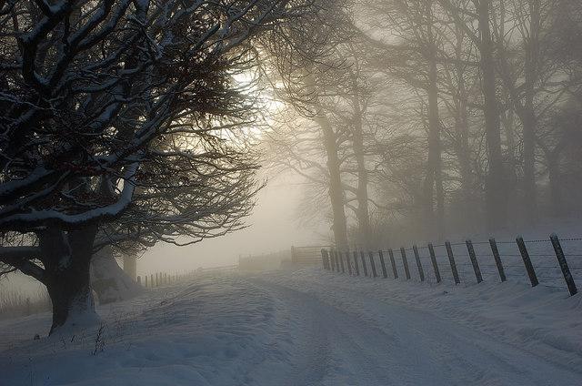 Winter morning, Glen Sax