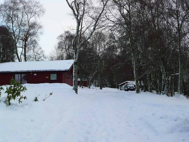 Snowy Torgormack