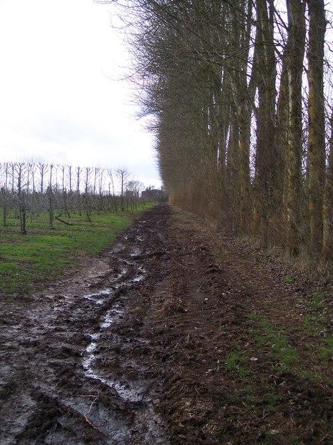 Bridleway to Soleshill Farm