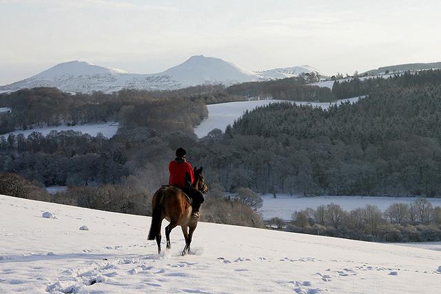 A rider on Gala Hill