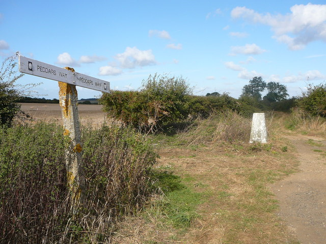 The Peddars Way at Massingham Heath