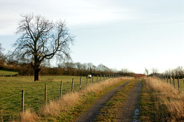Farm track east of the A425, Staverton