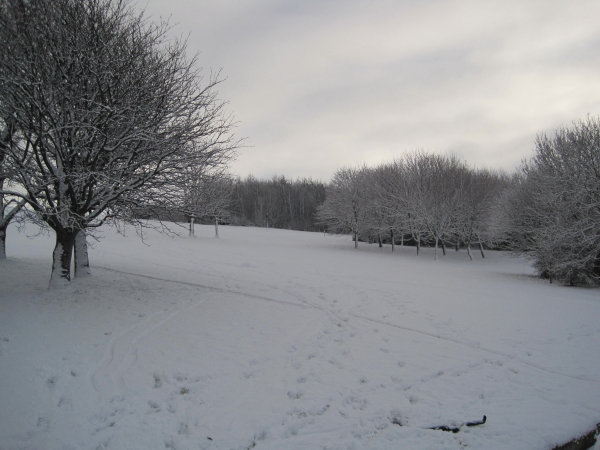 Riverside Park at Hebburn