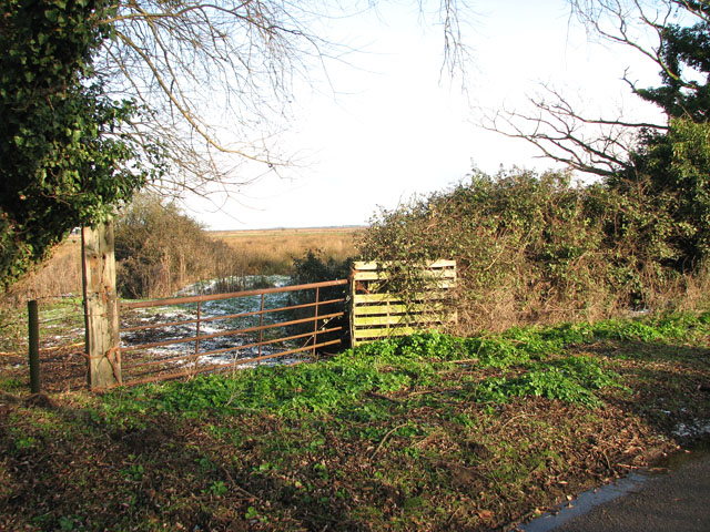 Gate into a marsh pasture north of Low Road