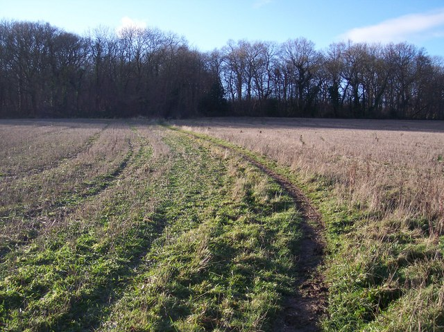 Bridleway to Denge Wood