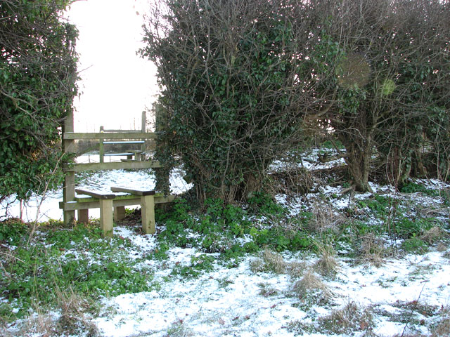 Stile in hedgerow
