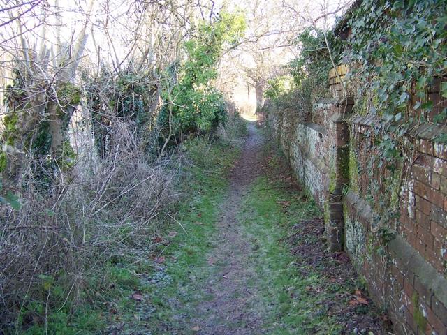 Footpath, Manswood