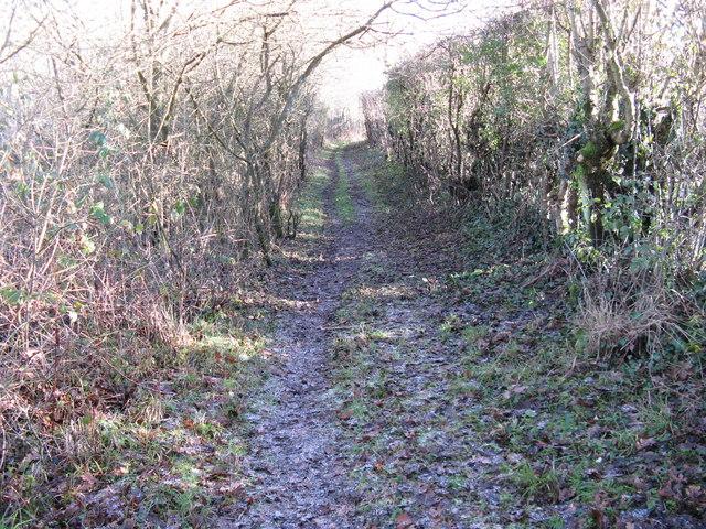 Path alteration near Parson's Farm