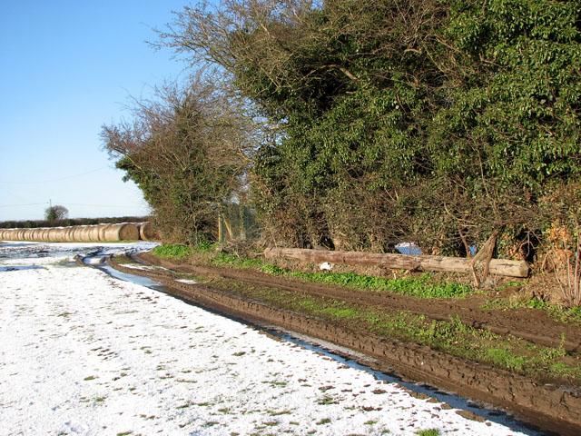 Farm track past sewage works