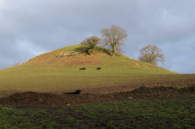 Wimley Hill