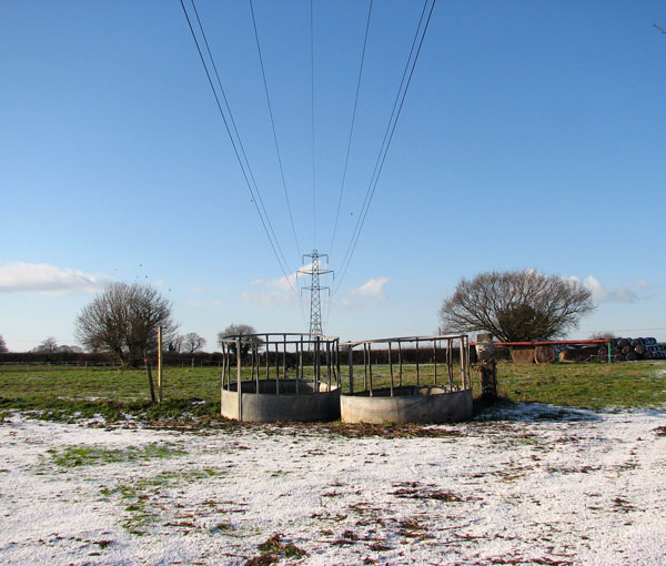 Power line above empty feed rings