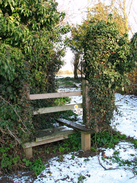 Stile into cattle pasture