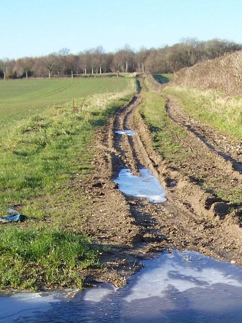Bridleway to Dean Leaze Farm