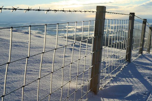 Fence Detail on Caerketton