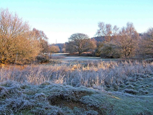 Hartlebury Common - a frosty January morning