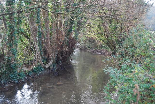 The Washford River