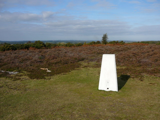 Trig point (77 metres) at Whitefield Plantation.