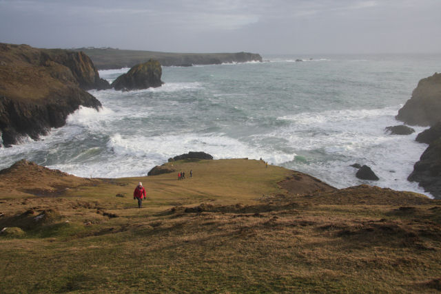 Kynance Cove from the cliff