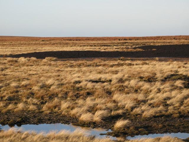 Panorama from the upper Rookhope lead smelting flue chimney (13: NNWb - Redburn Common)