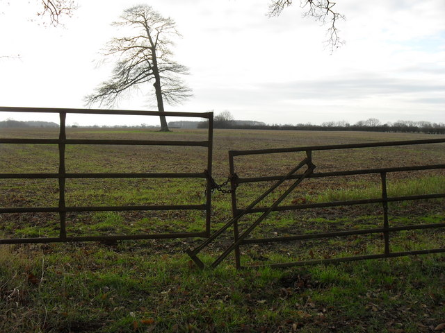 Gates into the field