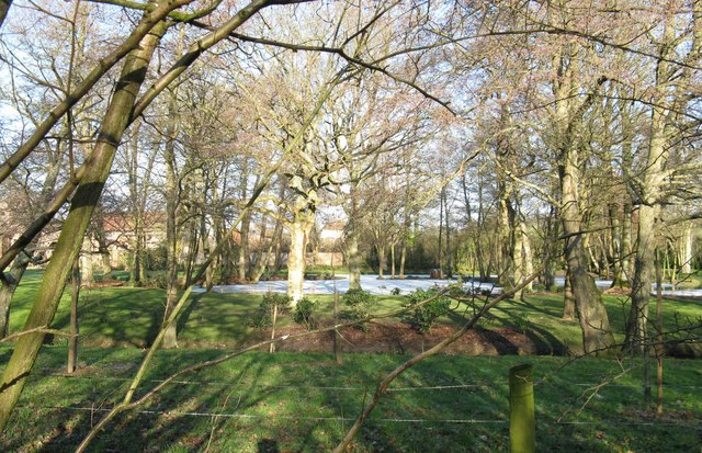 Frozen moat at Chesworth House