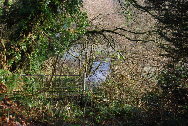 Gate by the road to Lower Roadwater