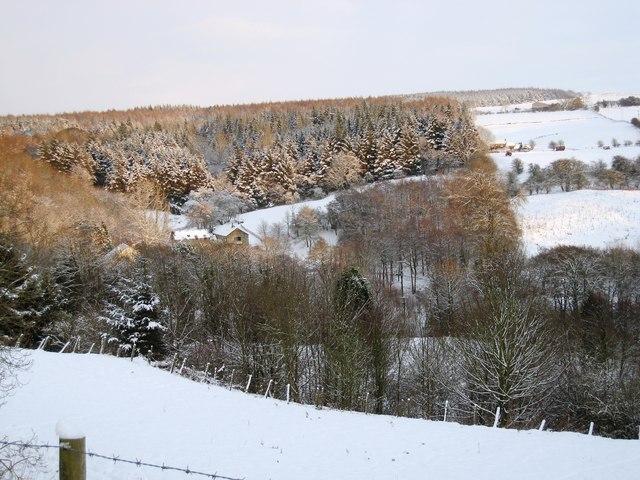 Snow-laden field near Osmotherley Youth Hostel
