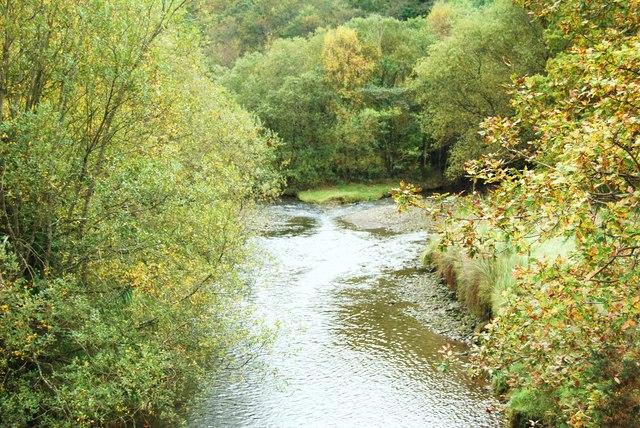 Gwynant at Abergwynant