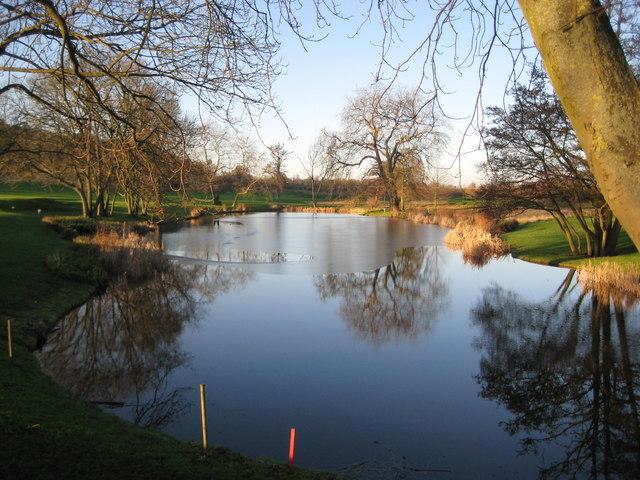 Watford: The Grove