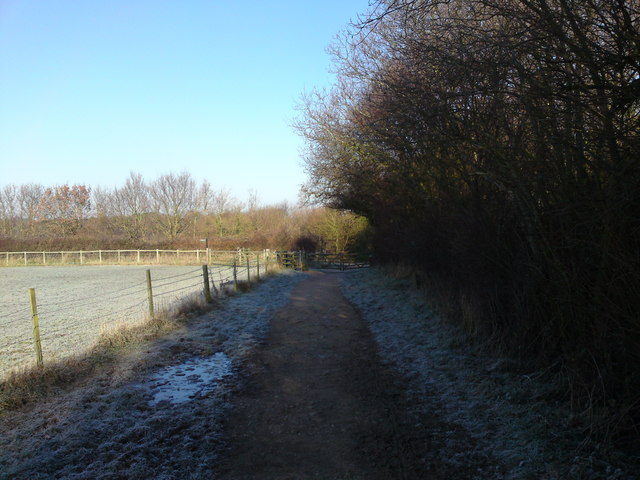 Footpath from Dock's Copse