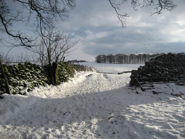 Footpath between Linton and Thorpe