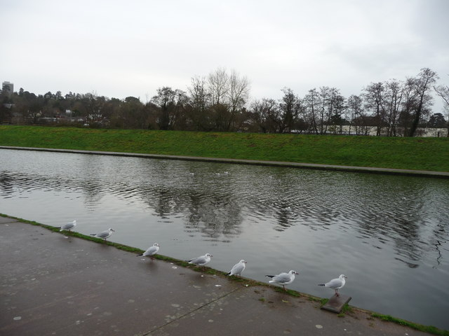 Exeter : River Exe Flood Relief Channel