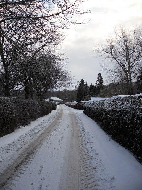 Buccleuch Estate Road at Carterhaugh Toll