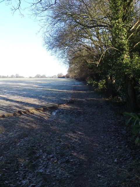 Strawberry trail towards Botley