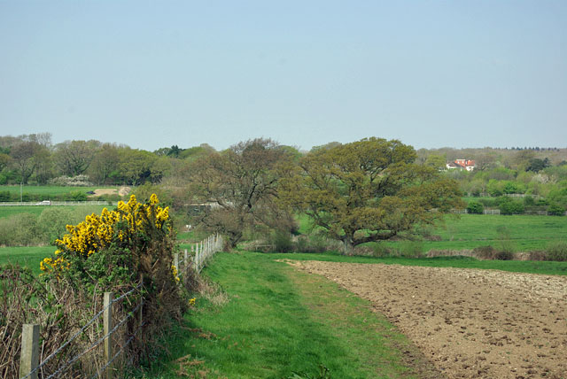 Path north from Highdown Hill